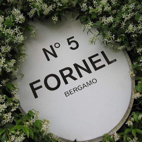 forneln5-gallery6
